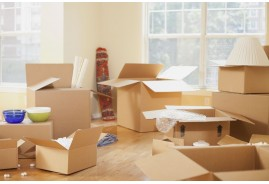 Best Types of Moving Boxes for Your Packing Needs